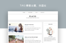 wordpress博客主題—Placid 1.0.0